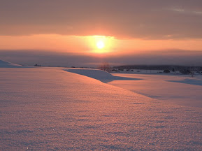 季節のうつろい・朝陽