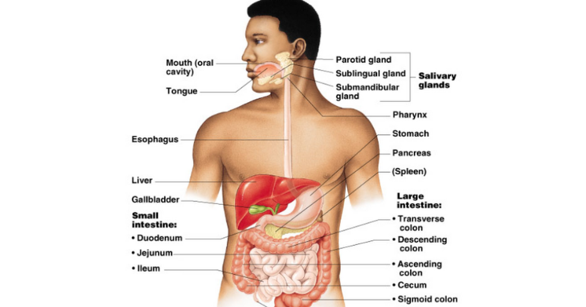 causes of low t