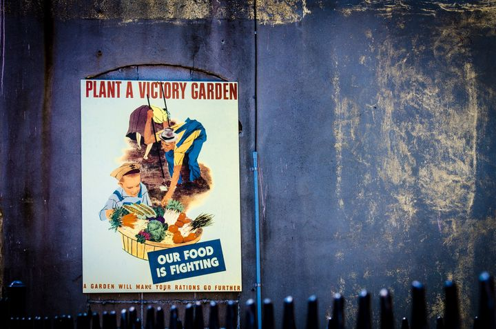 Poster promoting victories gardens, which nowadays could be a potential means to ease eco-anxiety