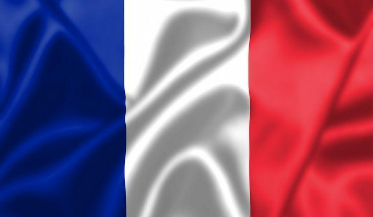 Image result for french flag picture
