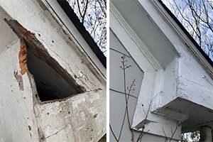 Damaged squirrel entry hole repaired, before and after photo