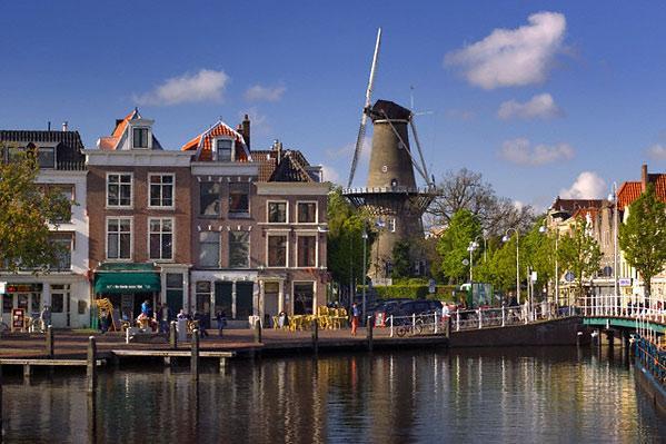 компания в голландии