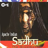 Sadhu (The Movement)