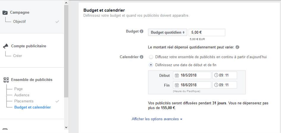 image gestionnaire publicité Facebook Budget