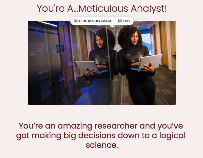 Career quiz result of meticulous analyst with brief result summary