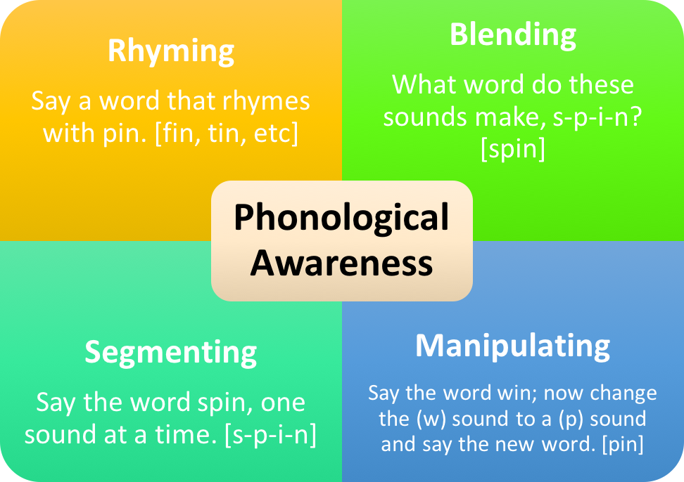 Model of processes of phonological awareness from the University of Nebraska Student Engagement Project.
