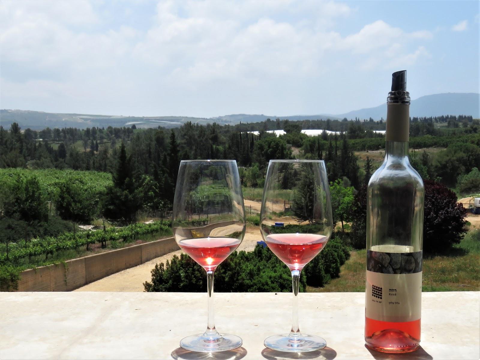 Вид на Галилею из винодельни Galil Mountain