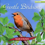 Gentle Birdsong (No Voice or Music Added)