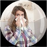 pollens et rhume