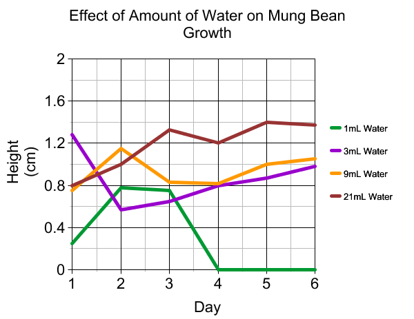 mung bean experiment My mung bean growing experiment - seed shots of day 1 and day 2.