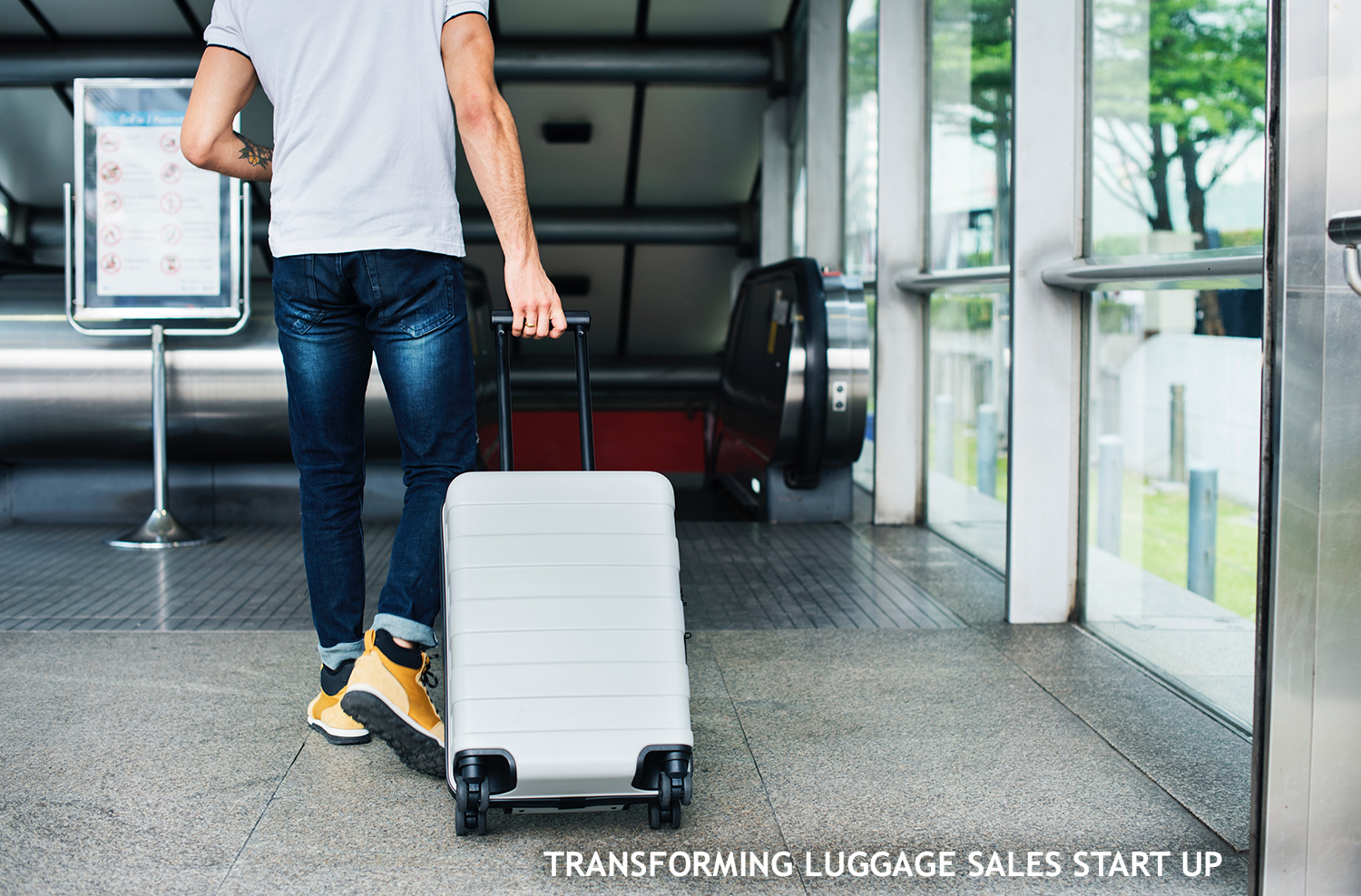 transforming luggage sales start up
