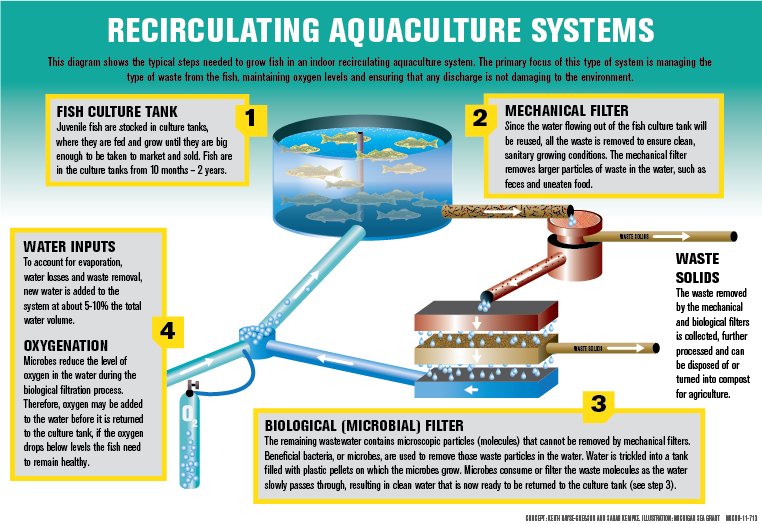 Feeding The Pale Blue Dot  Aquaculture