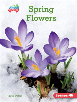 This is a image of the book from hoopla called Spring Flowers.