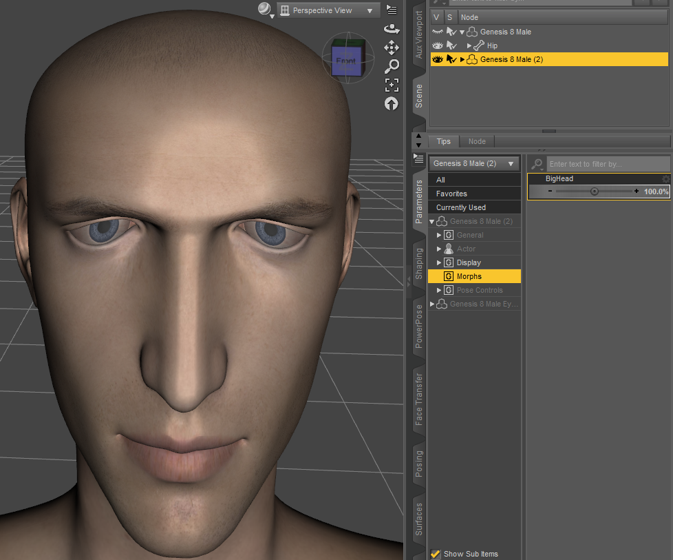 Daz3D Create Custom Morph result