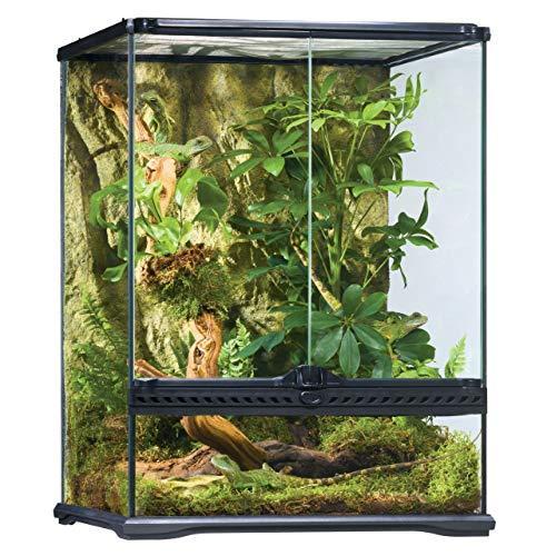 Image result for panther chameleon cage