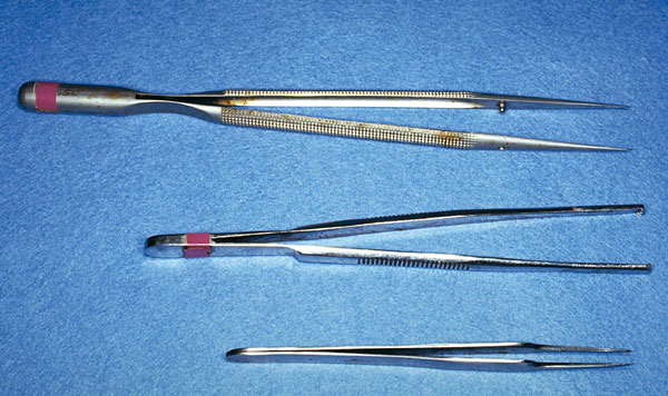 Bottom to top: Standard delicate-tissue, small-animal thumb forceps