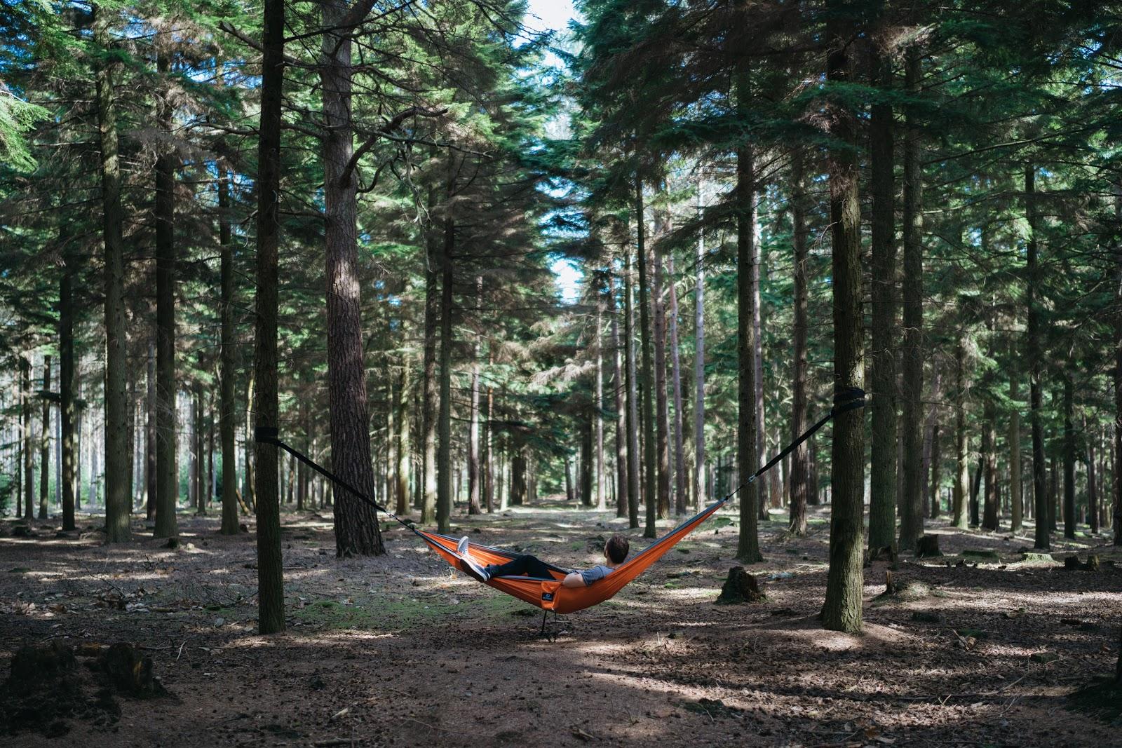 nằm võng trong rừng thức dậy lúc 5 giờ sáng