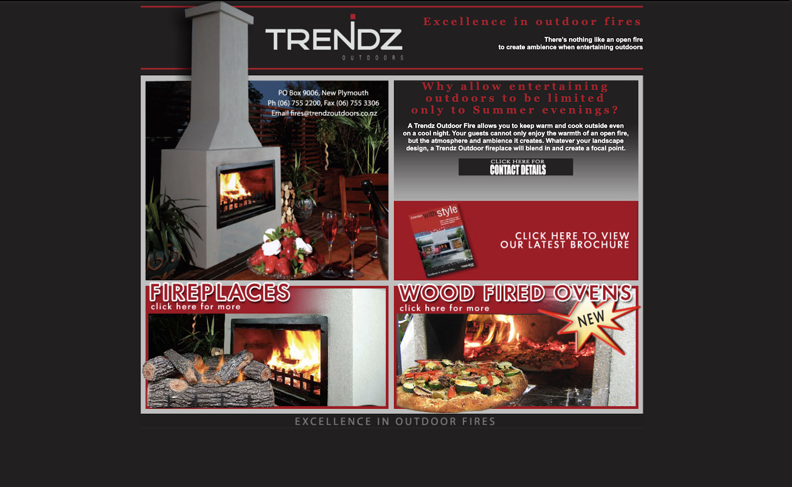 The Trendz website in 2009