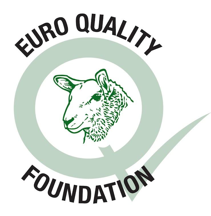 Euro Quality Foundation