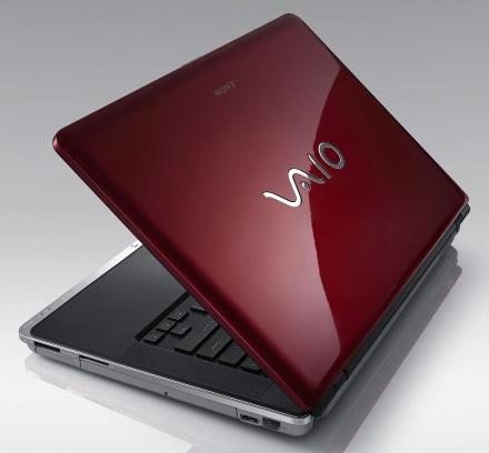 thay-vo-laptop-sony-vaio-1