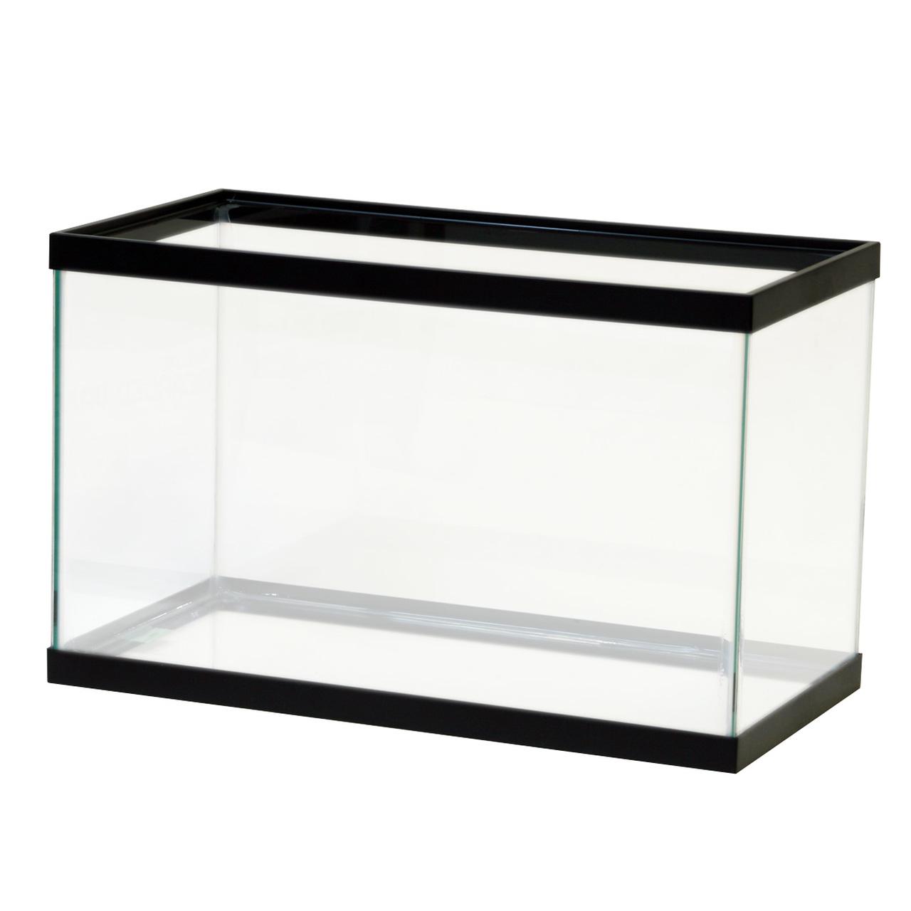 Empty 10-gallon aquarium