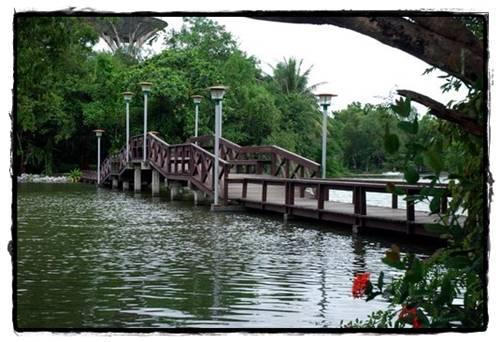 5. สะพานดาว