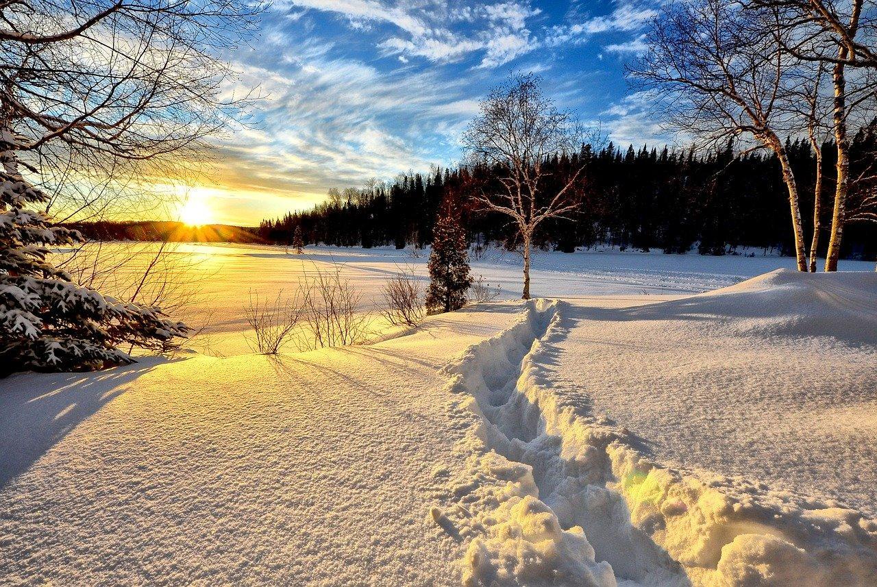 snow in a field