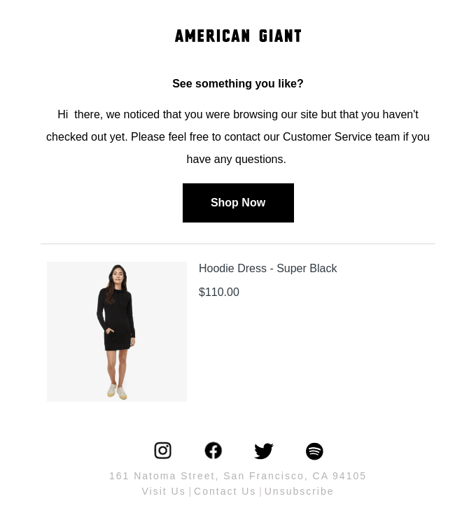 American Giant email example