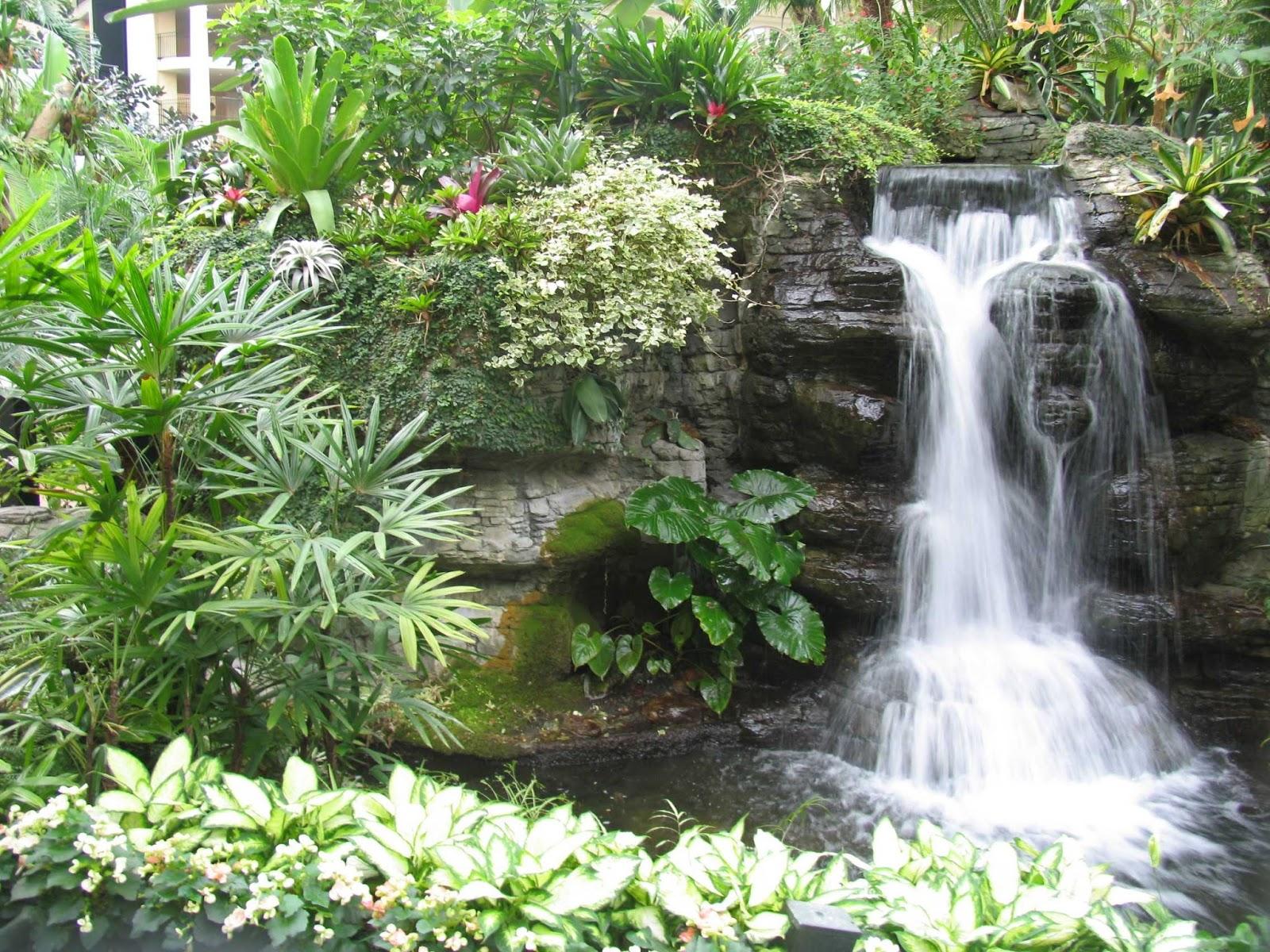 he-thong-tieu-canh-san-vuon-dai-duong-garden (34).jpg