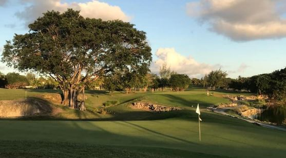this image shows readers a short hole at barbados golf club