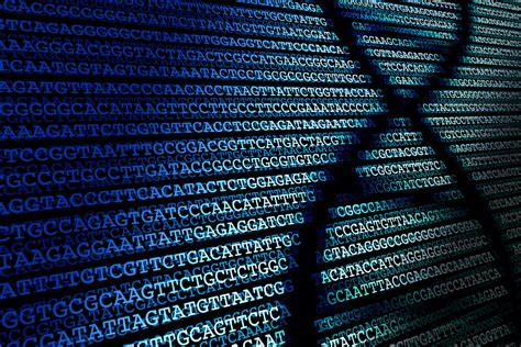 Image result for gene sequencing