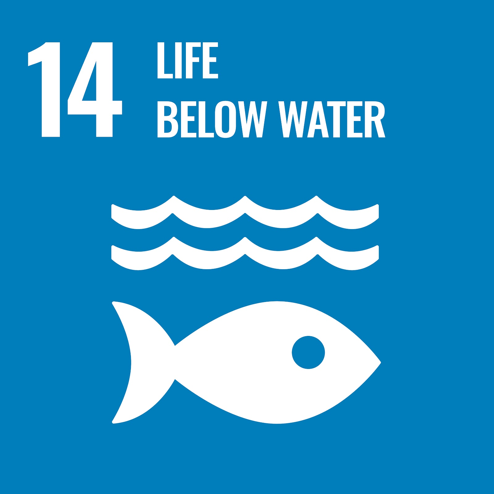 Sustainable Development Goal 14. Conserve and sustainably use the oceans, seas and marine resources.