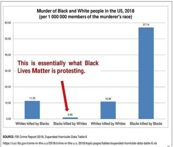 Đảng Dân chủ được sự hiệp lực của nhóm Big Tech đã cố tình phớt lờ và che giấu sự thật: Tỷ lệ người da trắng bị thiệt mạng bởi người da đen cực kỳ không cân xứng.