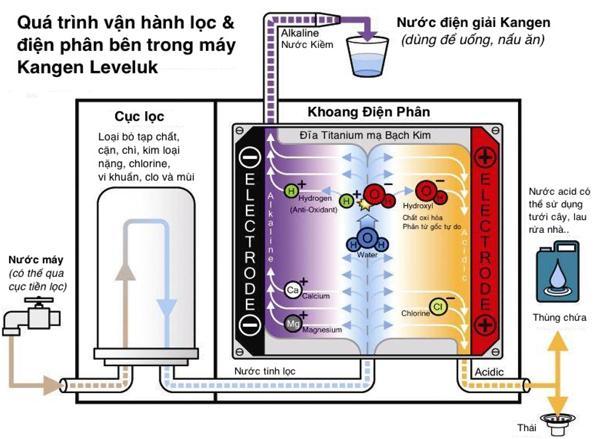 Nguyên lỹ hoạt động thông minh tạo nên sự khác biệt của máy lọc nước Kangen