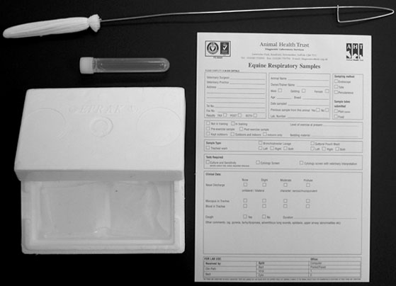 Equipment required for nasopharyngeal swabbing of the horse; sterile swab consisting of gauze attached to a length of soft stainless steel wire, tube containing transport medium into which the gauze end of the swab is placed and the wire trimmed off, insulated container with refrigerant pack and form for submission to diagnostic laboratory.