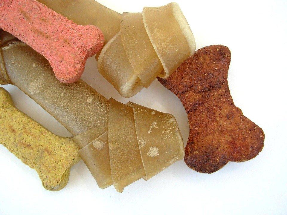 """Les friandises ou les bonbons permettent d'apprendre plus facilement et plus rapidement l'ordre """"debout"""" à votre chien. N'hésitez pas à en utiliser beaucoup !"""