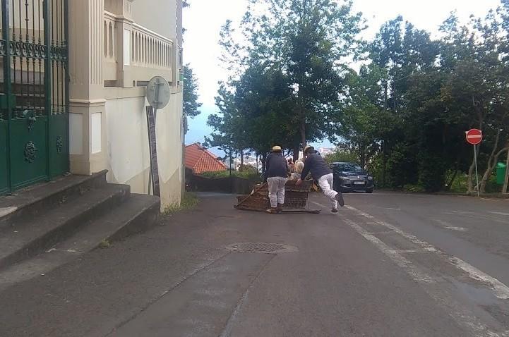 "(<img alt=""Madeira Basket Ride"">)"