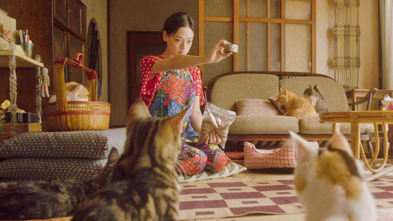4. Rent A Cat 02