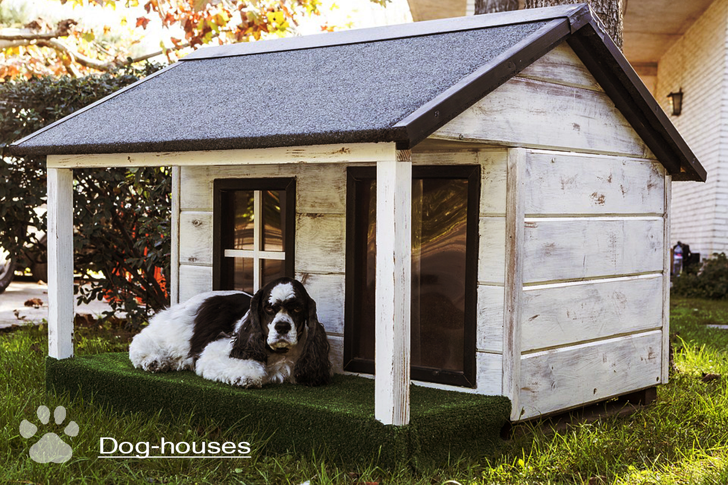 dog-houses and fence