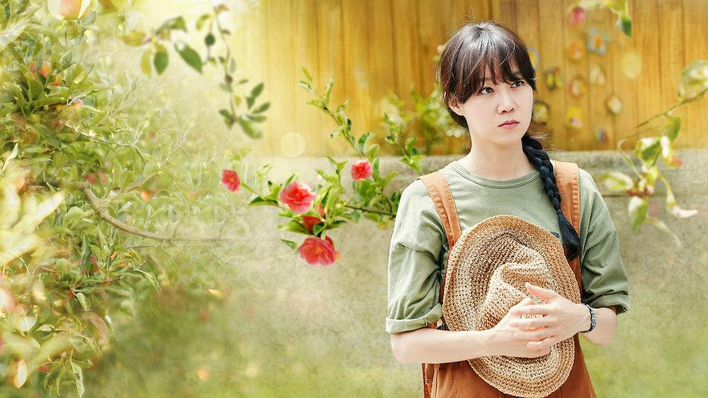 When the Camellia Blooms | Netflix Official Site