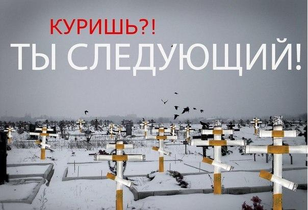 http://okhabits.ru/wp-content/uploads/2014/04/Vred_kurenia.3.jpg