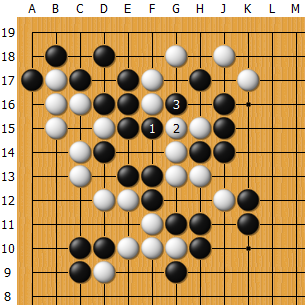 Fan_AlphaGo_04_E.png