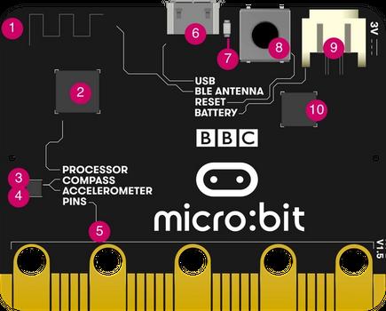 micro:bit back