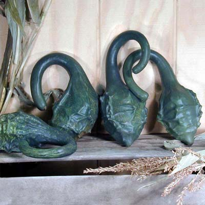 Photo of Gourd Cavemans Club, Gourds