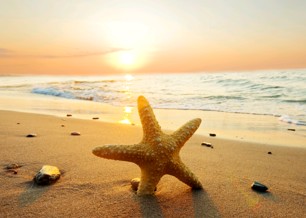 June Horoscope for 2014 will unfold the mysteries of this month of summer.