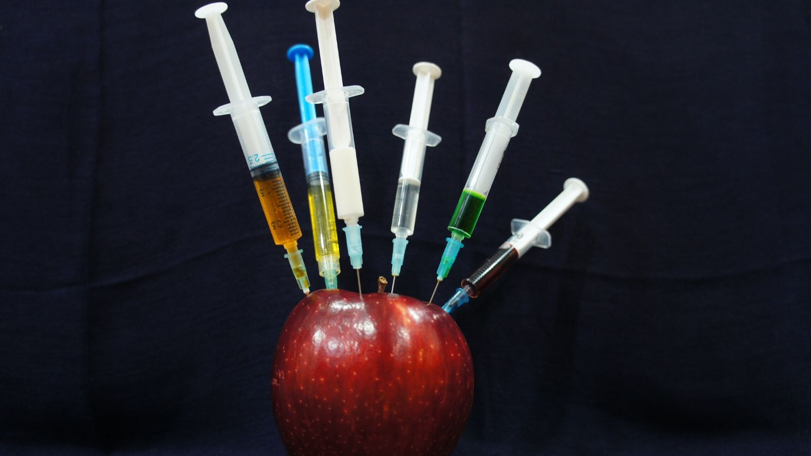 An apple with multiple syringes jabbed into it.