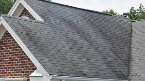 The Solution For Moldy Roof Shingles | Pacific West Roofing