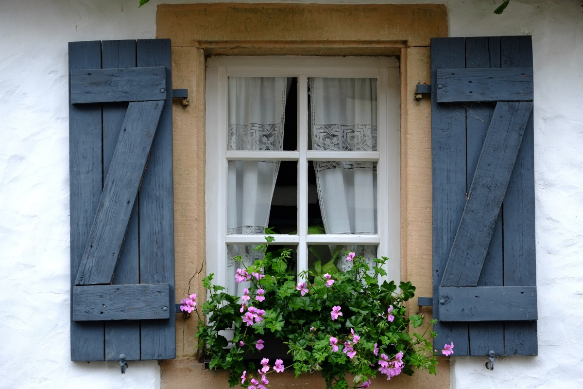 architecture house flower window old home wall balcony cottage color facade blue door shutter interior design farmhouse history historically old window hauswand out of date klappladen folding shutters wood shop window covering