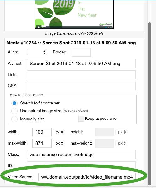 Screen Shot 2019-03-21 at 7.44.35 PM.png