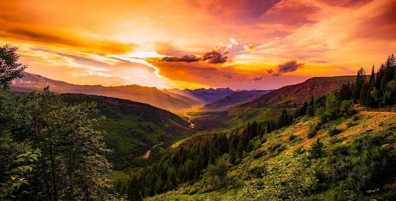 Homesteading in Montana